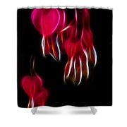 Bleeding Hearts 02 Shower Curtain