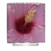 Blissful Repose Of Duality Shower Curtain by Sharon Mau