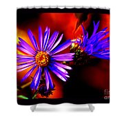Blooming Asters Shower Curtain