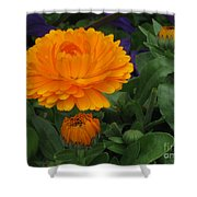 Blooming Gold Shower Curtain