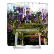 Blooming Wisteria  Shower Curtain