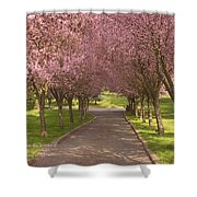 Blooms Along The Lane Shower Curtain