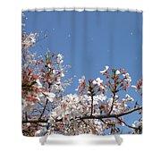 Blossom 4 Shower Curtain