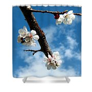 Blossoming Apricot Shower Curtain