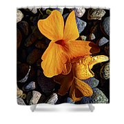 Blossoms Final Performance Shower Curtain
