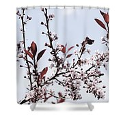 Blossoms In Time Shower Curtain