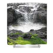 Blow Hole 2 Shower Curtain