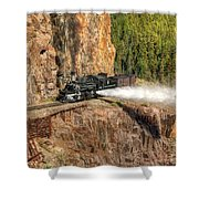Blowdown Shower Curtain