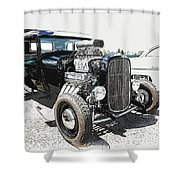Blown Coupe Shower Curtain