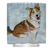Blue - Siberian Husky Dog Painting Shower Curtain