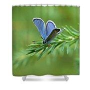 Blue 5 Shower Curtain