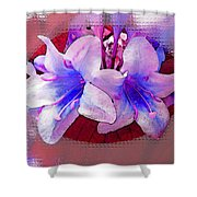 Blue And Red Weigela Window Shower Curtain