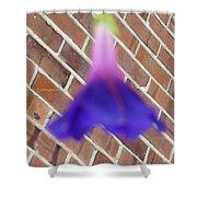 Blue Ballerina Shower Curtain