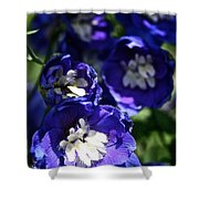 Blue Blossoms Shower Curtain