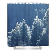 Blue Christmas Shower Curtain