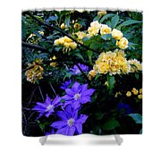 Blue Clematis With Yellow Lady Banks Rose Shower Curtain