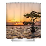 Blue Cypress Lake Sunrise Shower Curtain