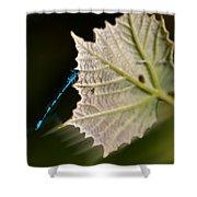 Blue Damsel On Leaf Shower Curtain