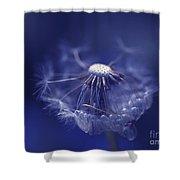 Blue Dandy Shower Curtain