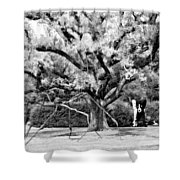Blue Dog And The Spider Infrared Shower Curtain