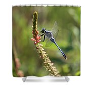 Blue Dragonfly On Pink Flower Shower Curtain