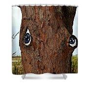 Blue Eyed Pine Shower Curtain