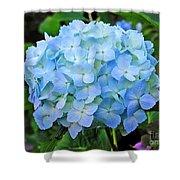 Blue Garden Flower Shower Curtain