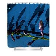 Blue Heart Shower Curtain