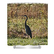 Blue Heron At Valley Forge Shower Curtain