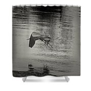 Blue Heron In Platinum Shower Curtain