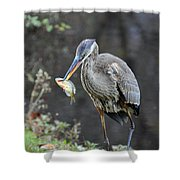 Blue Heron With Fish Shower Curtain