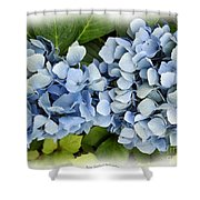 Blue Hydrangeas With Watercolor Effect Shower Curtain