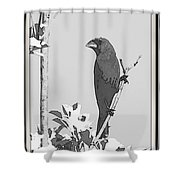 Blue In Black And White Shower Curtain