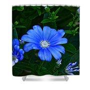 Blue Magic Shower Curtain by Byron Varvarigos