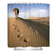 Blue Man Tribe Of Saharan Traders With Shower Curtain