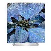 Blue Poinsettia Shower Curtain