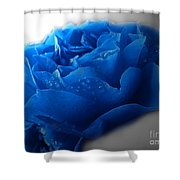 Blue Rose With Drops Shower Curtain