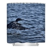 Blue Runway Shower Curtain