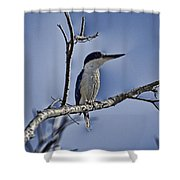 Blue Skies V2 Shower Curtain