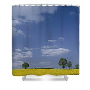 Blue Sky Covers A Yellow Field Shower Curtain