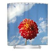 Blue Sky Nature Art Prinst Red Dahlia Flower Shower Curtain