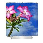 Blue Sky Pink Flower Shower Curtain