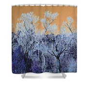 Blue Trees New Mexico Shower Curtain