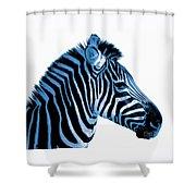 Blue Zebra Art Shower Curtain by Rebecca Margraf