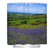 Bluebell Flowers On A Landscape, County Shower Curtain