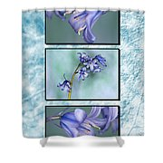Bluebell Triptych Shower Curtain