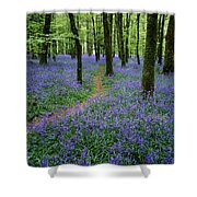 Bluebell Wood, Near Boyle, Co Shower Curtain