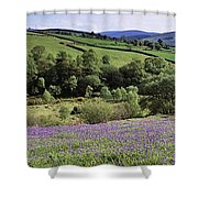 Bluebells In A Field, Sally Gap, County Shower Curtain