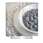 Blueberries In Blue And White China Bowl Shower Curtain
