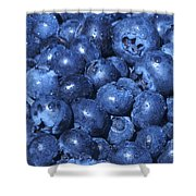 Blueberries With Waterdrops Shower Curtain